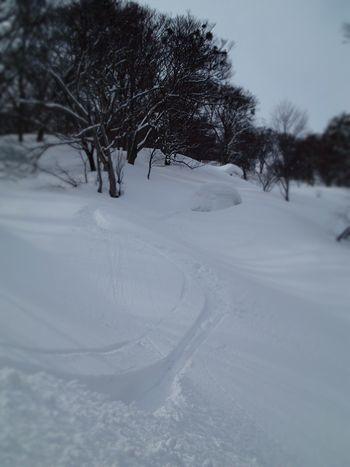 サトー山 (5).jpg