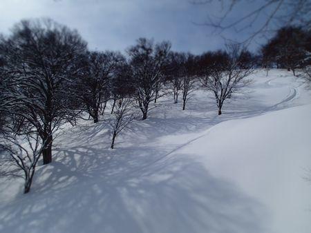 サトー山 (6).jpg