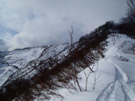 小雪 (2).jpg