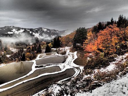 秋冬.jpg