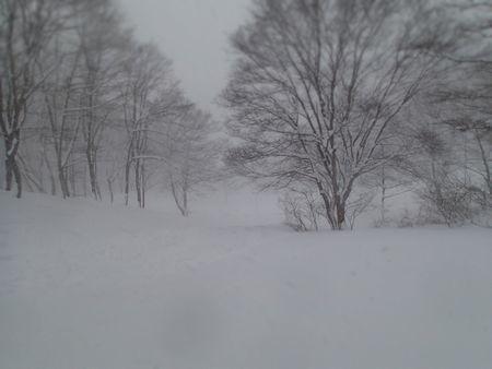 豪雪 (1).jpg