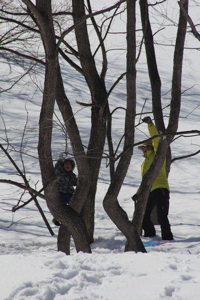 雪宴 (4).jpg
