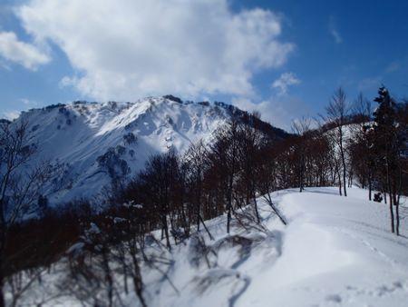 satoyama (4).jpg
