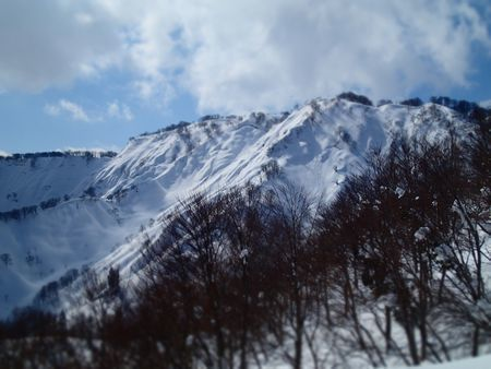 satoyama (5).jpg